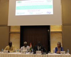 Table Ronde de plaidoyer et de mobilisation de ressources pour le financement de la stratégie nationale  e-santé du Niger