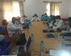 Mise en place du groupe d'Experts Nationaux pour le Plaidoyer en faveur de la Mobilisation des Ressources Domestiques pour l'achat des produits contraceptifs au Niger.